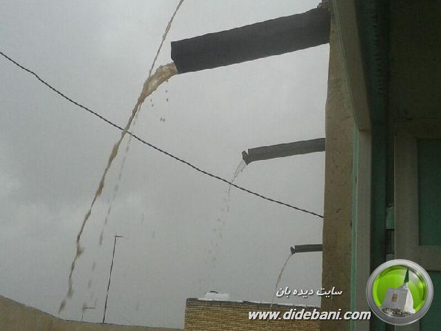 بارندگی در دیده بان