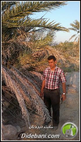 khordad-9319