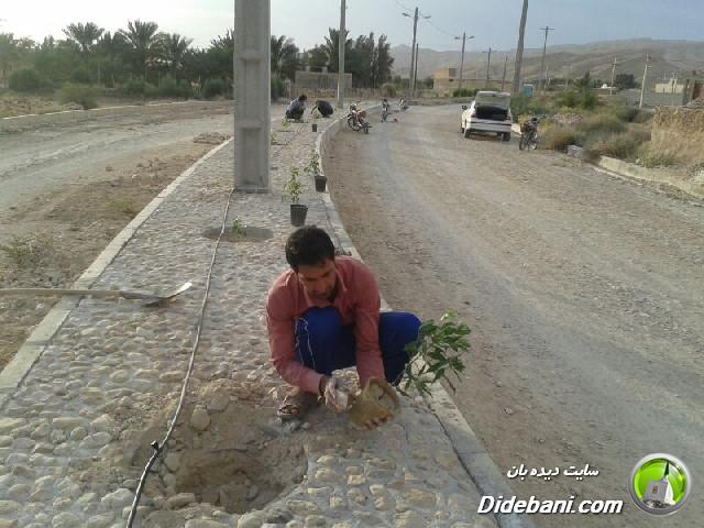 درختکاری و سنگ فرش بلوار شهید پالاهنگ دیده بان